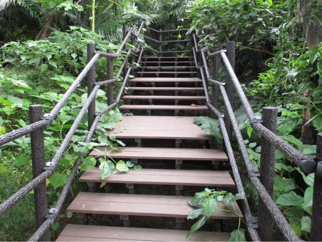 Natural park type stair deck (natural exploration wooden footpath)